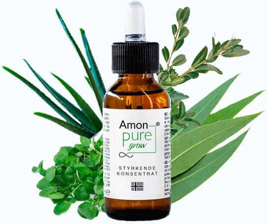 amon pure grow